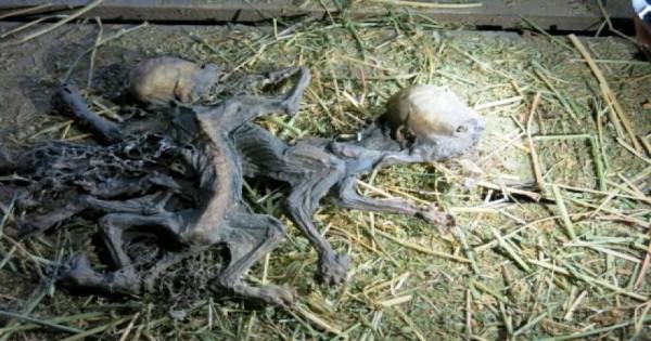 Χιλή: Βρέθηκαν πτώματα των περιβόητων… Τσουπακάμπρα;