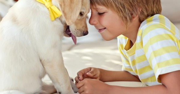 «Mαμά θέλω να πάρουμε σκυλάκι»