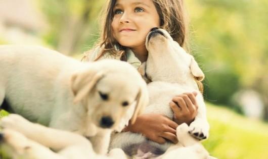 Οι μυστικές δυνάμεις του σκύλου σου