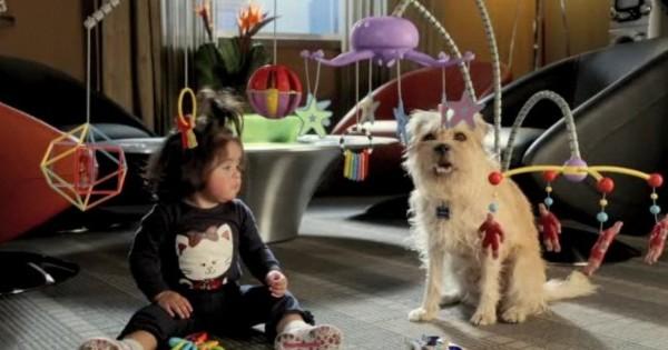 Σκύλος… μπέιμπι σίτερ! (video)