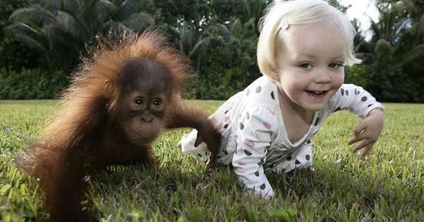 29 παιδάκια που ταυτίζονται απόλυτα με τα ζώα τους! (εικόνες)