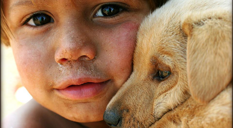 ζώα έρωτας Άγιος Βαλεντίνος