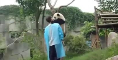 Το μικρό πάντα θέλει μια αγκαλιά (βίντεο)
