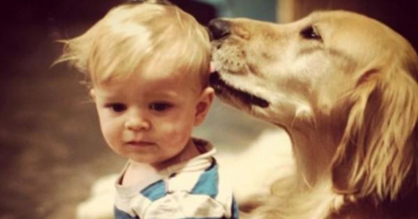 Τα 15 αυτά σκυλιά που θα έκαναν τα πάντα για τα παιδιά! (εικόνες)