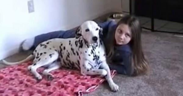 Ο πατέρας τους είπε να χαμογελάσουν – Άπλα δείτε πώς αντέδρασε ο σκύλος της οικογένειας! (βίντεο)