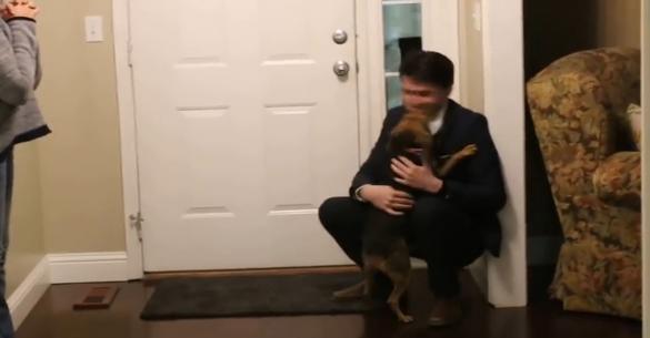 Ένα αρκετά «δυνατό» βίντεο: Επέστρεψε μετά από 2 χρόνια – Δείτε την αντίδραση του σκύλου! (βίντεο)
