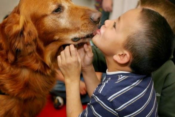 φίλοι υγεία Σκύλος