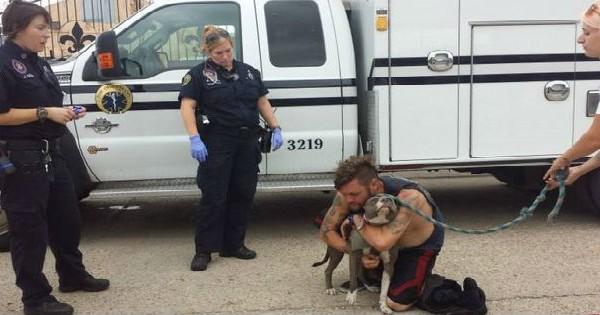 Δείτε τι συμβαίνει όταν ένας άστεγος άντρας συναντά ξανά το σκύλο του (εικόνες)