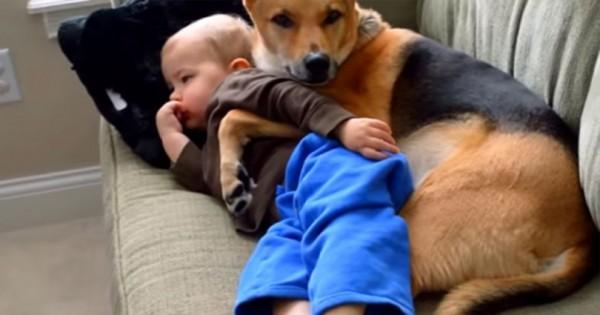 Άφησε μόνο του το άρρωστο μωρό της για ένα λεπτό και όταν επέστρεψε είδε κάτι καταπληκτικό! (βίντεο)