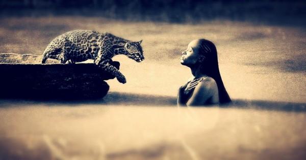 Με ποια ζώα ταυτίζονται οι άνδρες και με ποια οι γυναίκες;
