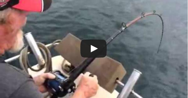 Καρχαρίας κλέβει την ψαριά του ψαρά! (video)