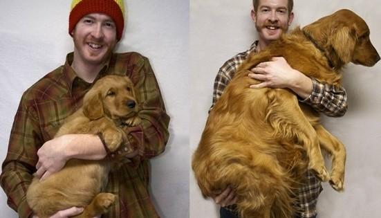 Σκύλος: Μαζί μας… όσα χρόνια κι αν περάσουν! (εικόνες)