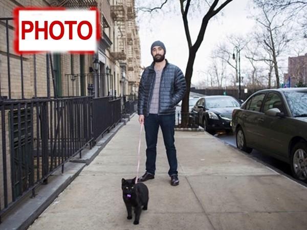 γάτες Άνδρες Men & Cats