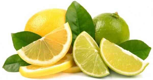 Προσοχή! Μην δίνετε λεμόνια, lime και grapefruit στο σκύλο ή τη γάτα σας!