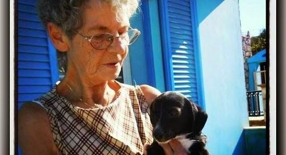 Η 74χρονη Γερμανίδα που ζει στην Κάλυμνο και έχει σώσει 400 ζώα