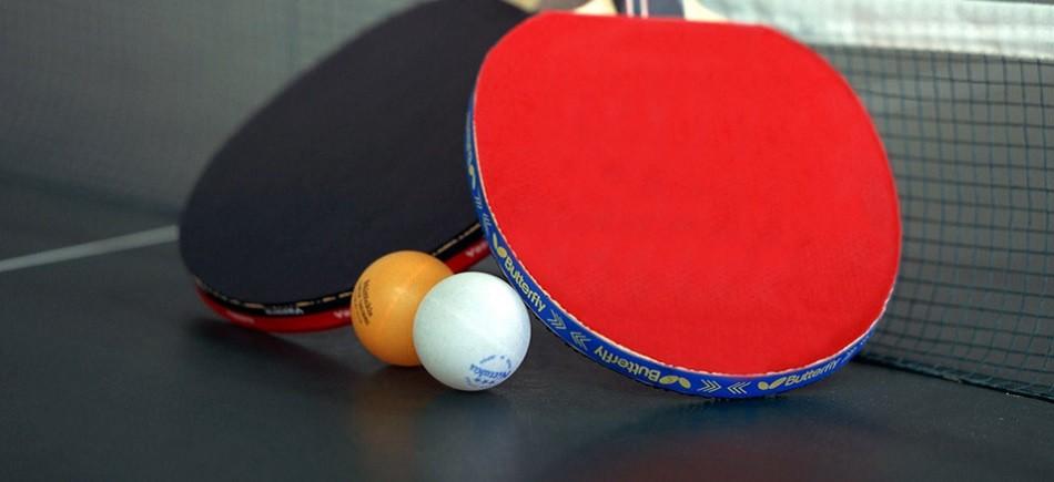 Σκύλος ping pong