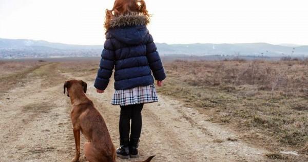 Βίντεο – γροθιά για όσους σκέφτονται να αποκτήσουν ζώο