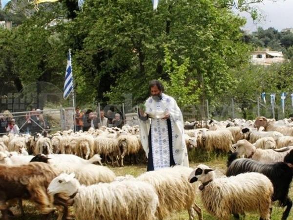 πρόβατα Κρήτη ιερέας