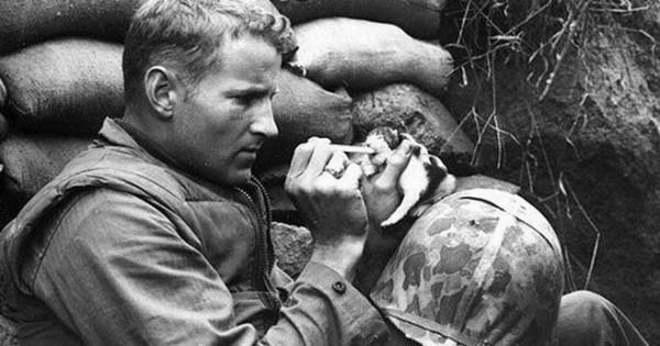 Καλύτεροι φίλοι και στον πόλεμο: 20 εκπληκτικές φωτογραφίες στρατιωτών και ζώων σε εμπόλεμη ζώνη!