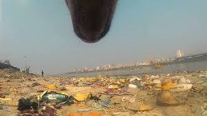 Από τα μάτια ενός αδέσποτου σκύλου στη Βομβάη (Βίντεο)