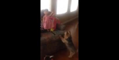 Ο σκύλος που ήθελε να παίξει με την κούκλα (Βίντεο)
