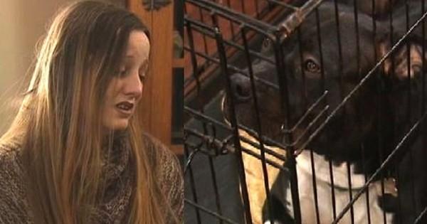 Ο φίλος της, την κόλλησε στον τοίχο και άρχισε την χτυπάει. Δείτε όμως τι τον έκανε το pitbull της… (Βίντεο)