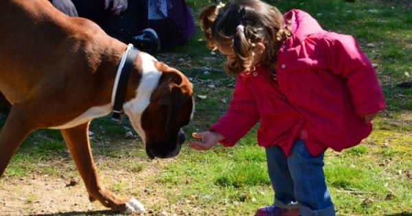 Ο σκύλος ενισχύει το παιδικό ανοσοποιητικό σύστημα