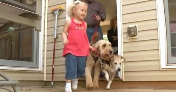 Ο σκύλος ακολουθεί αυτό το κοριτσάκι παντού. Μόλις μάθετε το λόγο θα δακρύσετε! (βίντεο)
