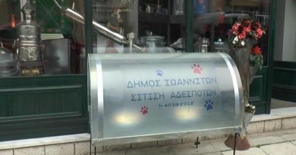 Ταΐστρες για τα αδέσποτα τοποθετεί ο Δήμος Ιωαννιτών
