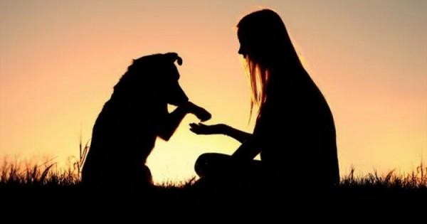 Οι 10 λόγοι που ο σκύλος κάνει τη ζωή μας καλύτερη