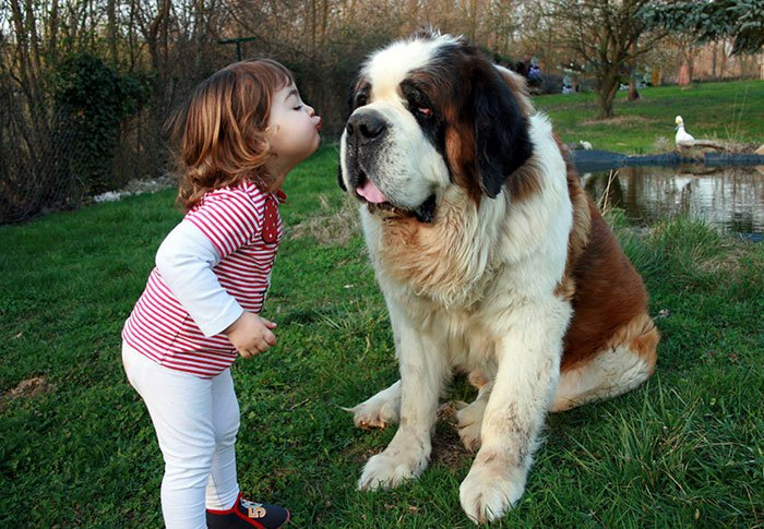 kids-with-dogs-68_700