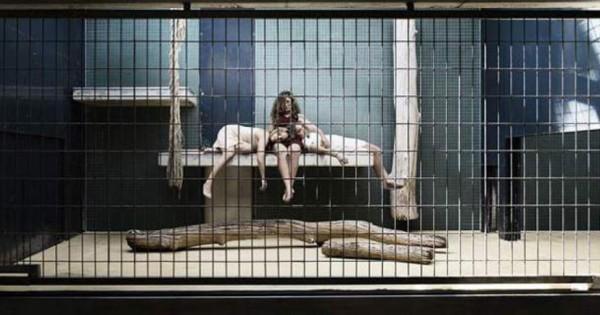 Ο ζωολογικός κήπος των… ανθρώπων: Εικόνες που σε βάζουν σε σκέψεις