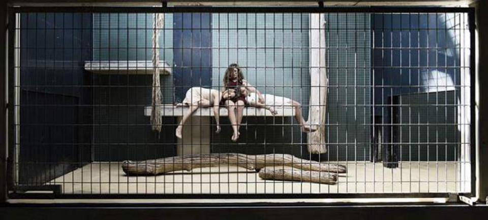 ζωολογικός κήπος ανθρώπων ζωολογικός κήπος άνθρωπος