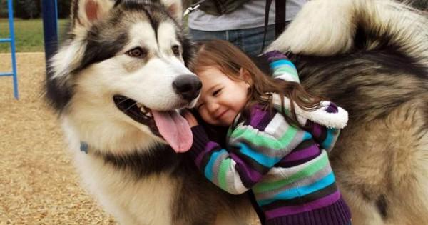 «Ο σκύλος δάγκωσε ξαφνικά το παιδί» – Συμβαίνει; Τι πρέπει να προσέχουμε
