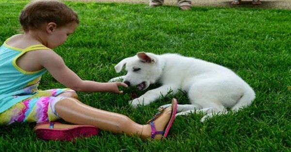 Μια περίεργη φιλία μεταξύ ενός τρίχρονου κοριτσιού και ενός σκύλου. Οι δυο τους έχουν μία ιδιαιτερότητα…