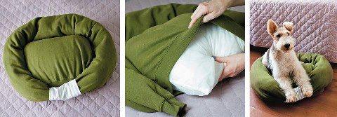 ύπνος κρεβάτι κατοικίδιο