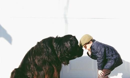 Ένα παιδί, ένας σκύλος και μια δυνατή φιλία (Εικόνες)