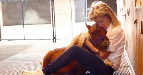 Το μικροσκοπικό άλογο που νομίζει ότι είναι σκύλος είναι ό,τι καλύτερο θα δείτε σήμερα! (Βίντεο)