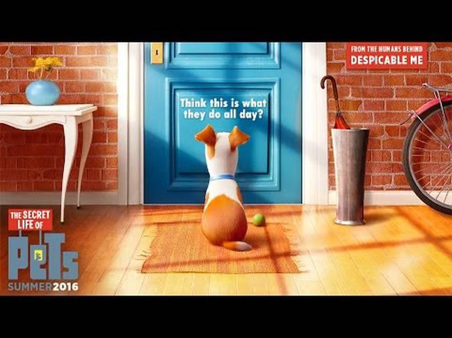 κατοικίδια The Secret Life Of Pets