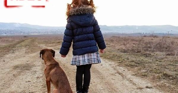 Βιντεο-γροθιά: Είστε έτοιμοι (και υπεύθυνοι) να υιοθετήσετε ένα ζωάκι;