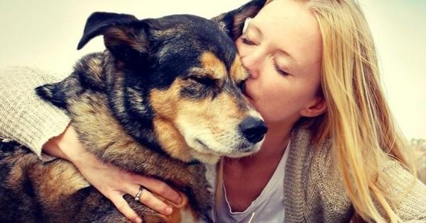 Έρευνα: Ο σκύλος μας είναι ο καλύτερος σύμμαχος!