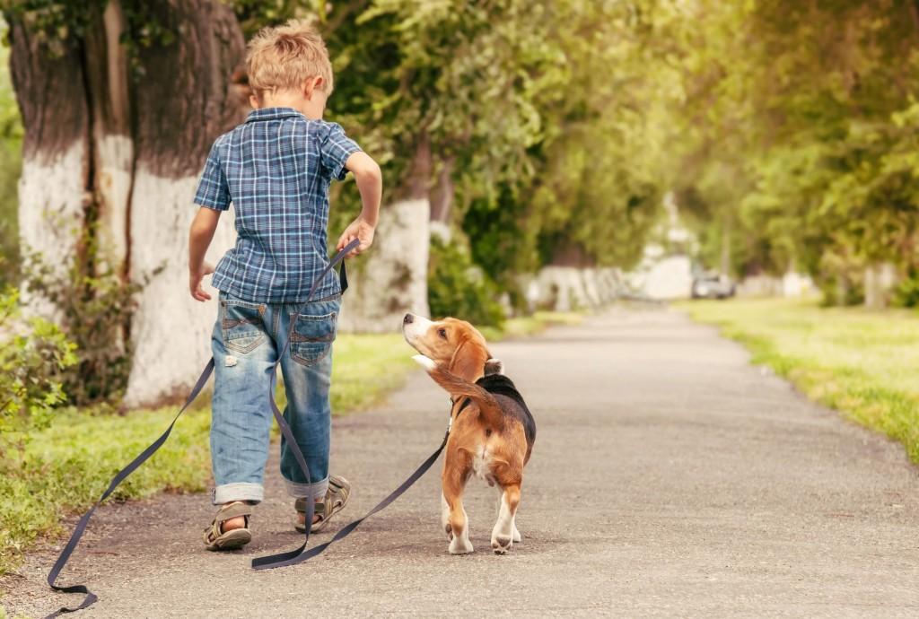 Σκύλος παιδιά δάγκωμα