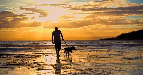 Μπορώ να πάρω το σκύλο μου στην παραλία;