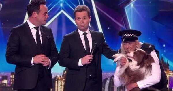Σκύλος ο νικητής του «Britain's Got Talent» 2015 (βιντεο)