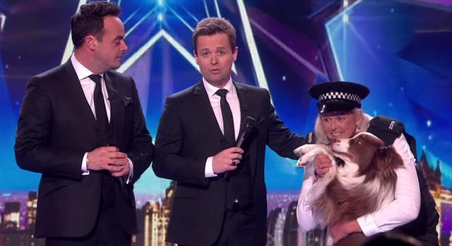 Σκύλος νικητής Britains Got Talent