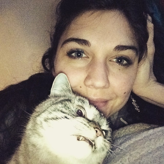 γάτα βαμπίρ