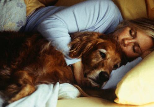 Γιατί μερικες γυναίκες έχουν σκύλο και όχι σύζυγο;