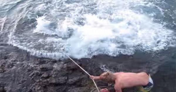 ΑΠΙΣΤΕΥΤΟ: Δεν φαντάζεσαι τι έπιασε… (Βίντεο)