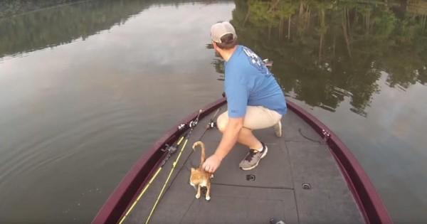 Βρήκαν ένα γατάκι στη μέση της λίμνης. Δείτε όμως τι συνέβη μετά! (Βίντεο)