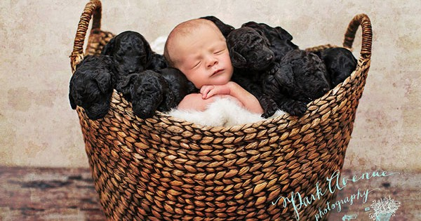 Nεογέννητο μωρό με τα… κουτάβια του! (Εικόνες)